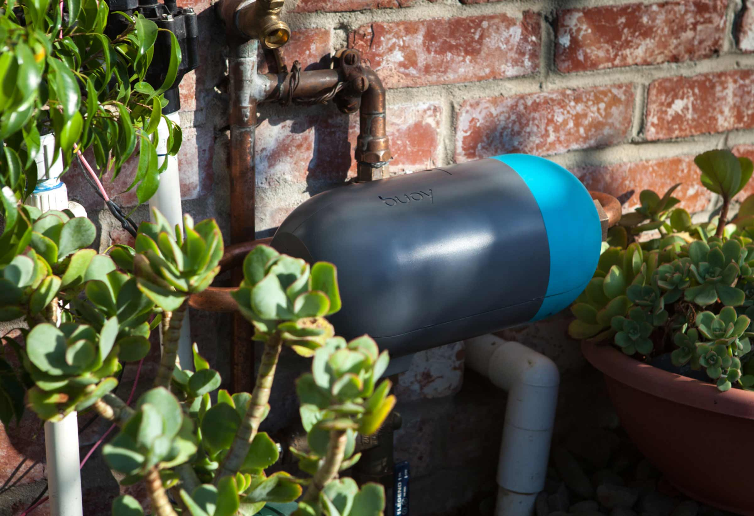 Buoy Whole Home Water Controller pictured installed