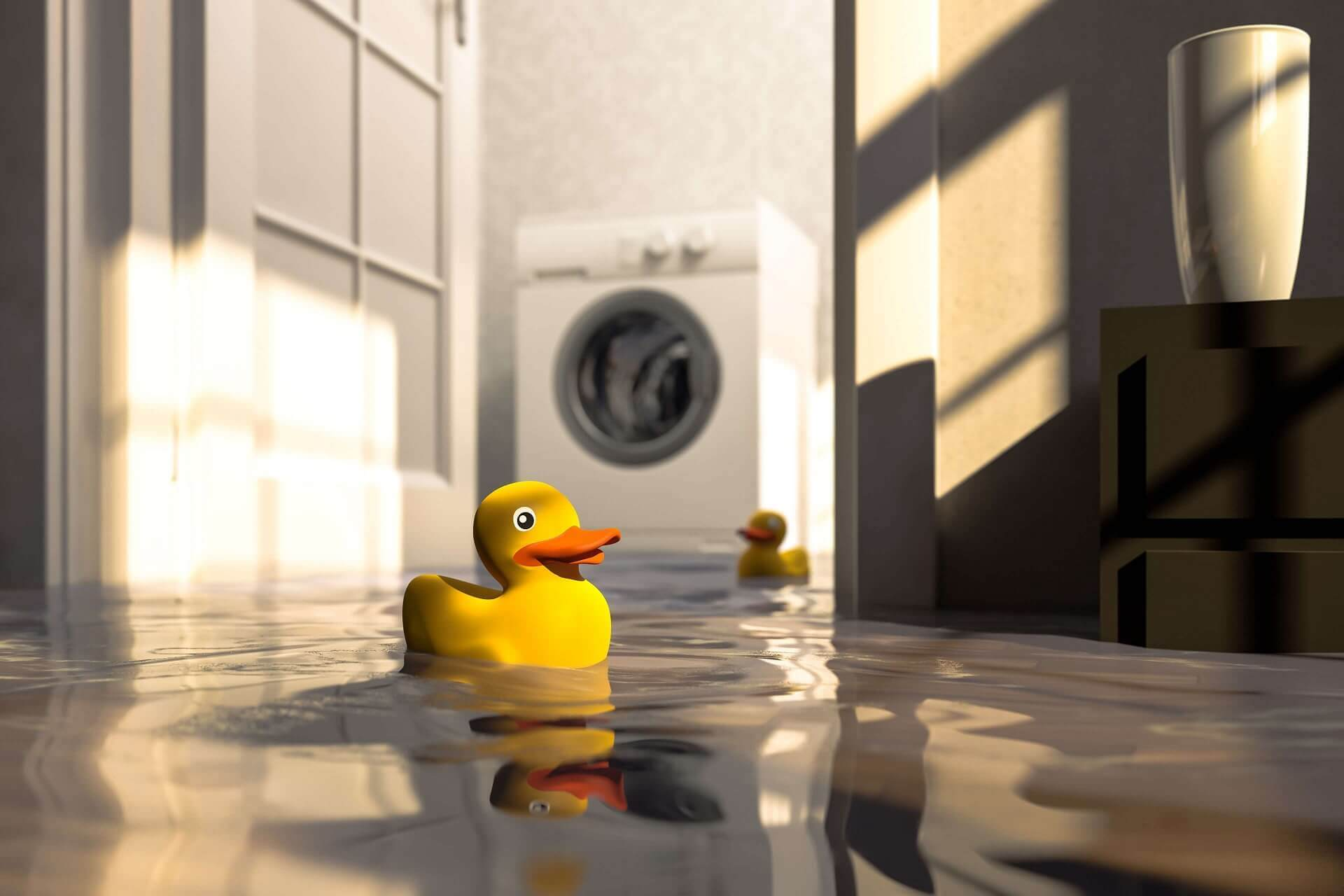 Rubber ducky in flooded room